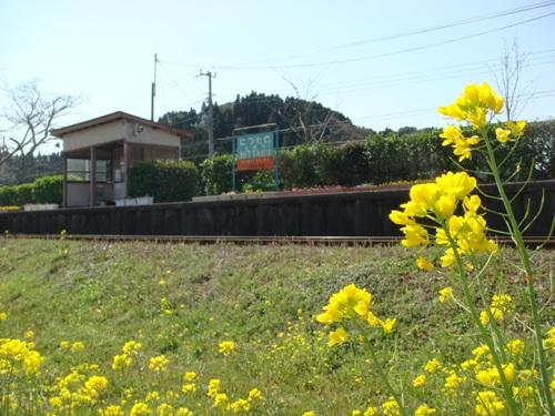 コピー ~ DSC05925.JPG
